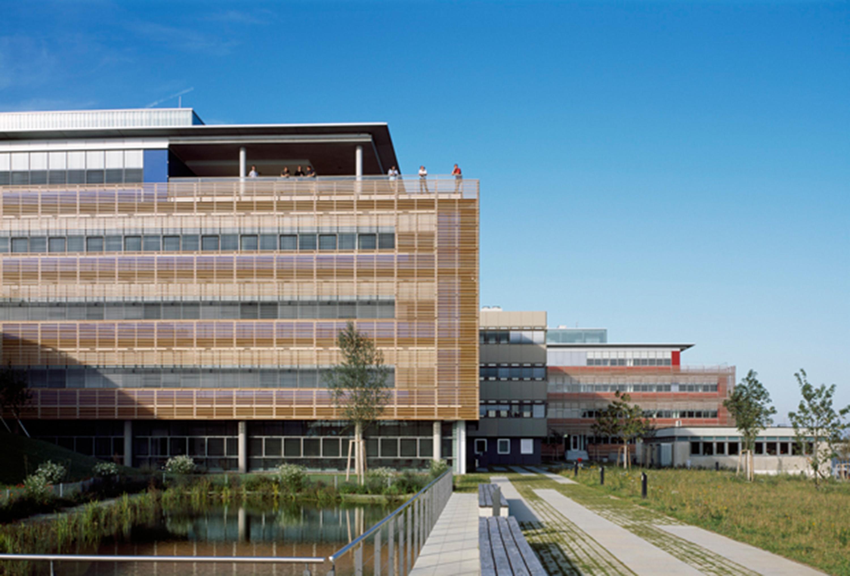 Institut für Entwicklungsbiologie (12)