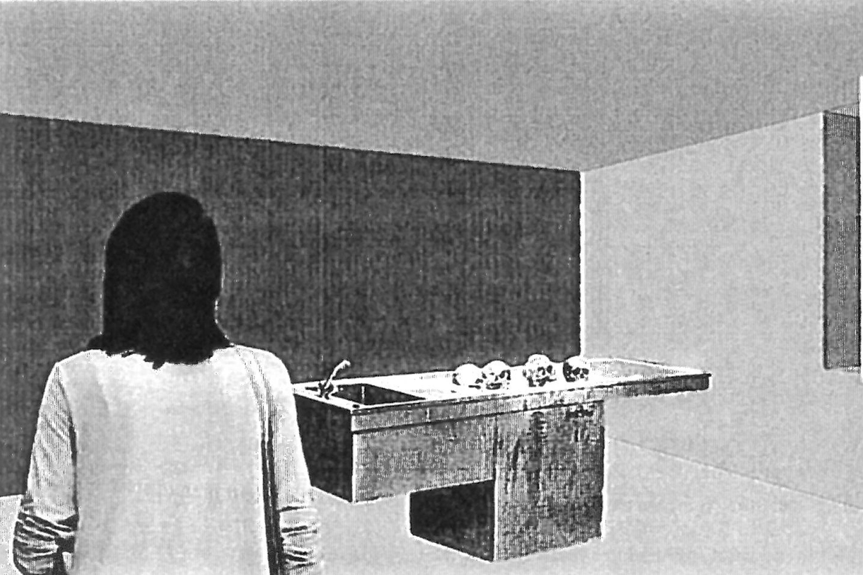Ausstellungskonzeption über den Psychoanalytiker O. Gross (14)