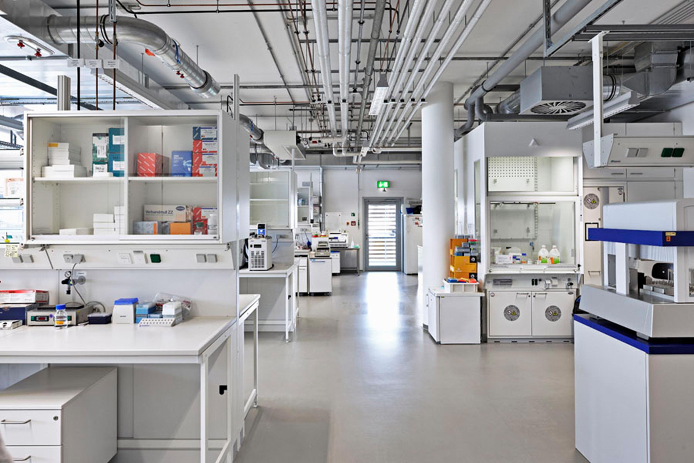 Institut für Entwicklungsbiologie (11)