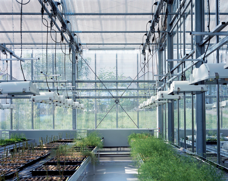 Gewächshaus zur Pflanzenforschung (11)