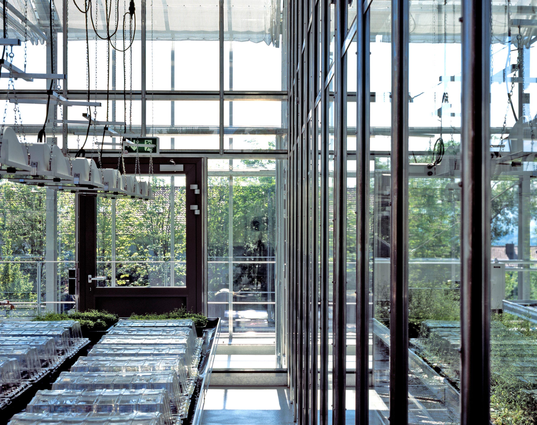 Gewächshaus zur Pflanzenforschung (9)