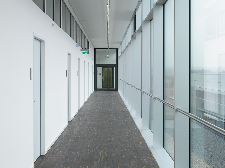 Max-Planck-Institut für Chemie (11)
