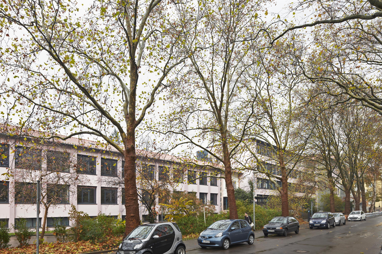 Sanierung und Umbau Kepler-Gymnasium (1)