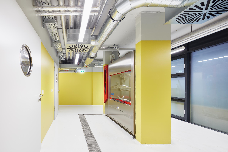Forschungsflächen im Friedrich-Miescher-Laboratorium (4)