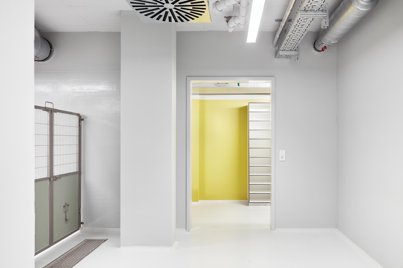 Forschungsflächen im Friedrich-Miescher-Laboratorium (8)