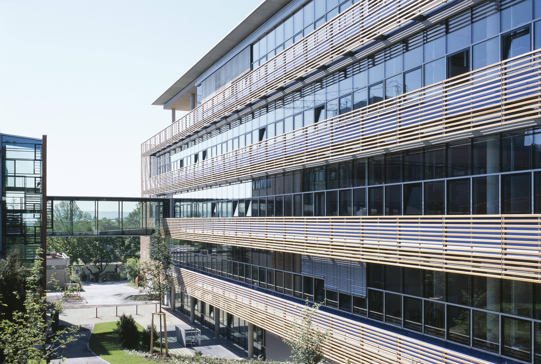 Institut für Entwicklungsbiologie (2)