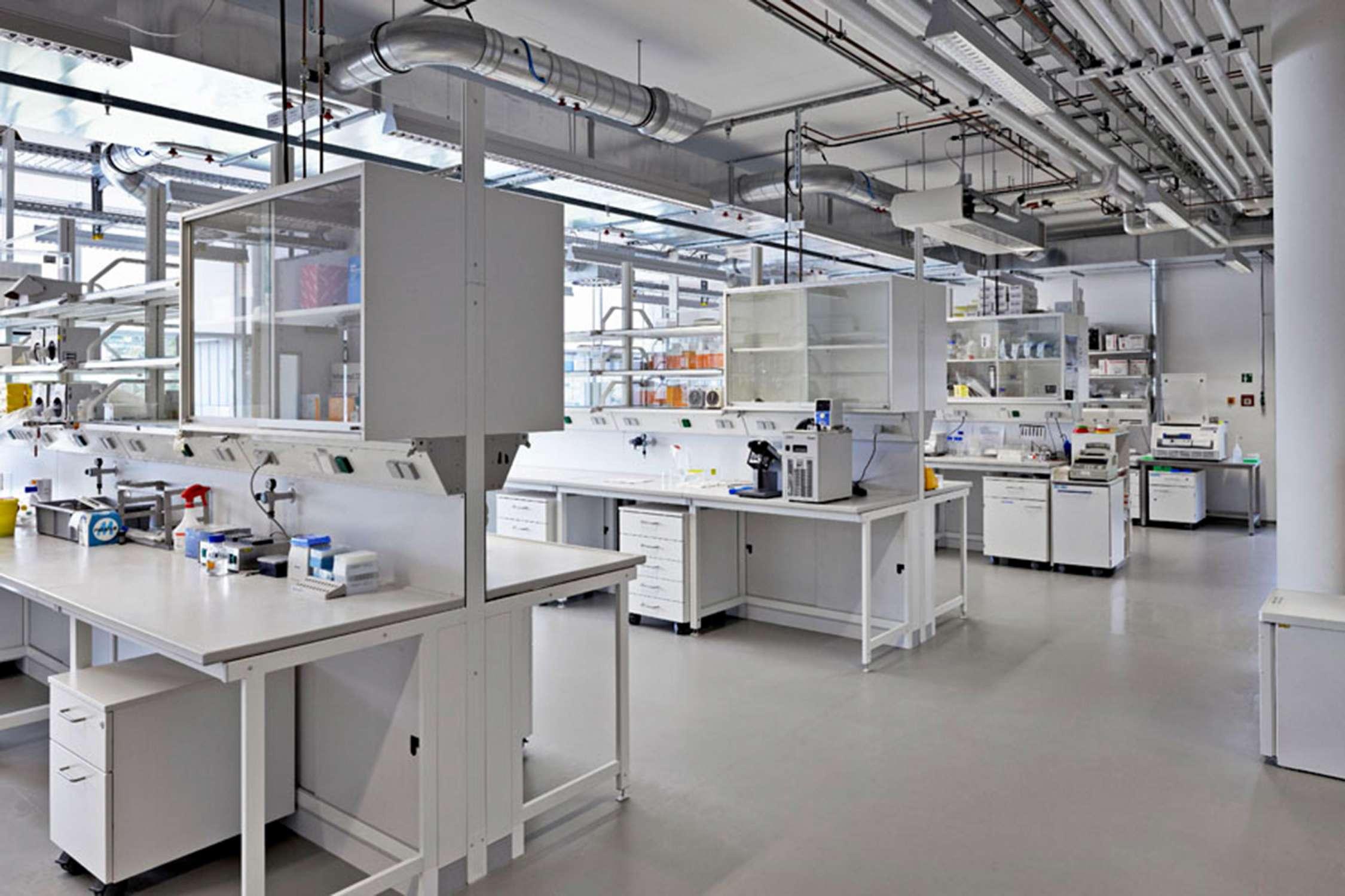 Institut für Entwicklungsbiologie (10)