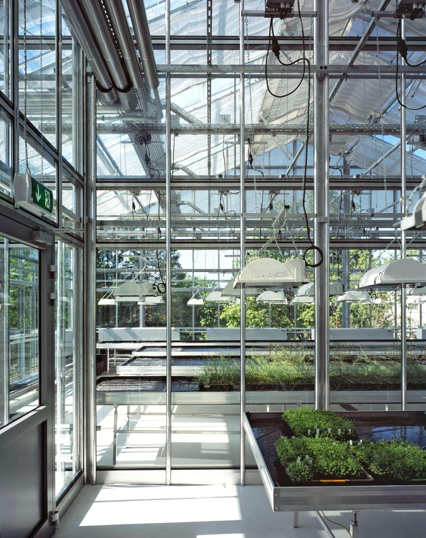 Gewächshaus zur Pflanzenforschung (8)