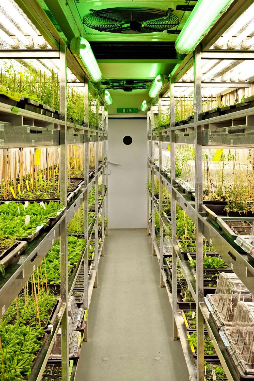 Laborräume mit Pflanzenwuchskammern (1)