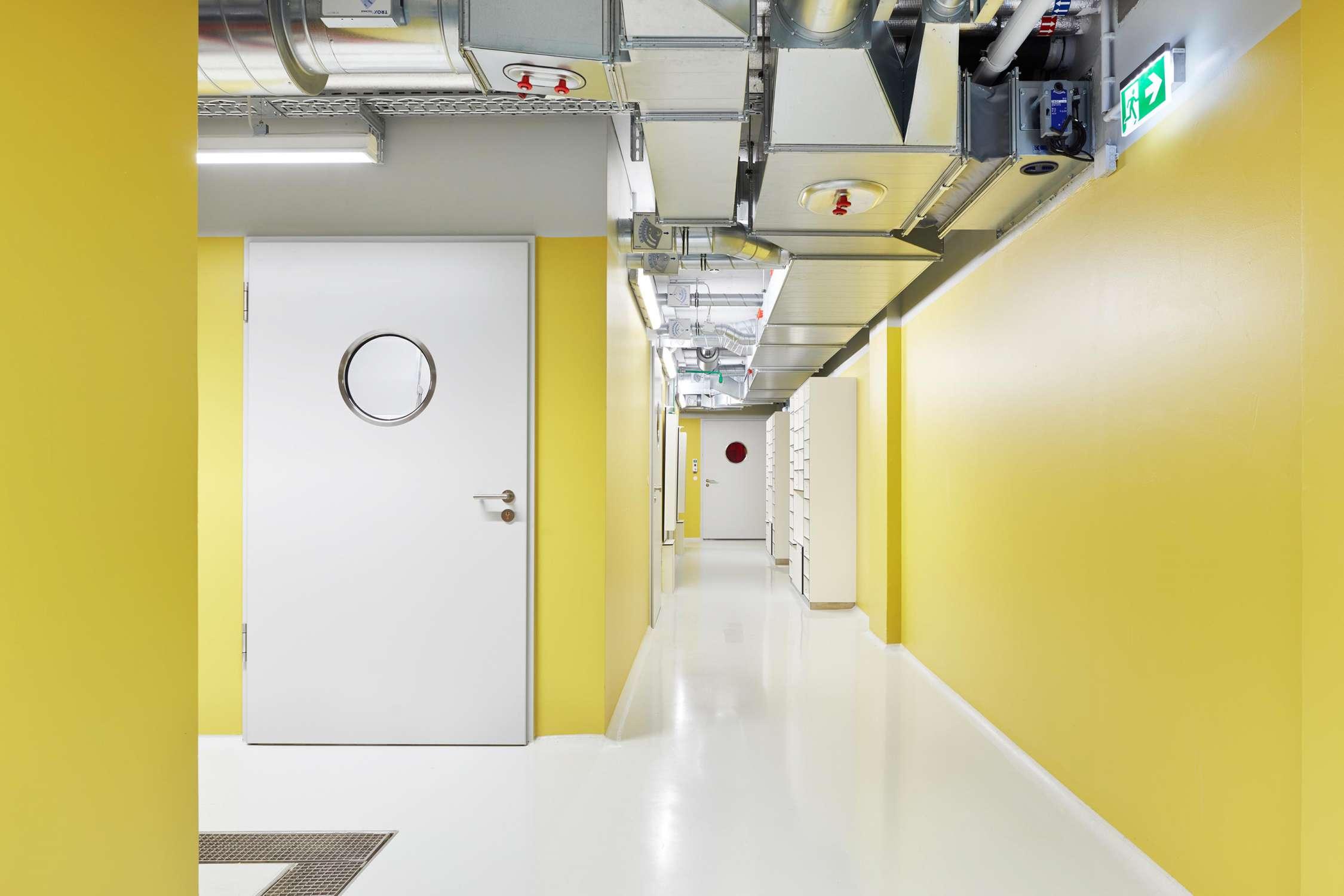 Forschungsflächen im Friedrich-Miescher-Laboratorium (2)