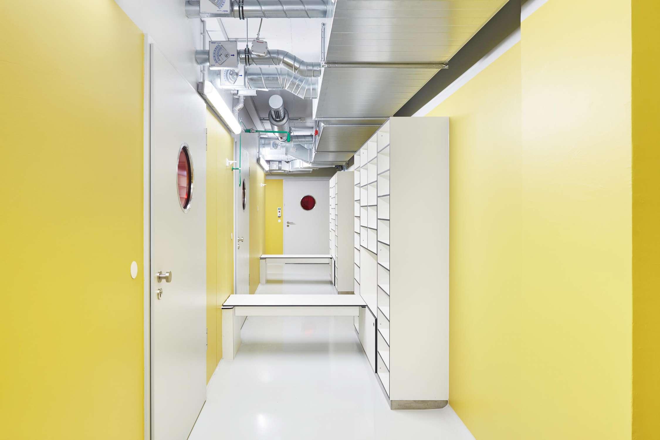 Forschungsflächen im Friedrich-Miescher-Laboratorium (3)