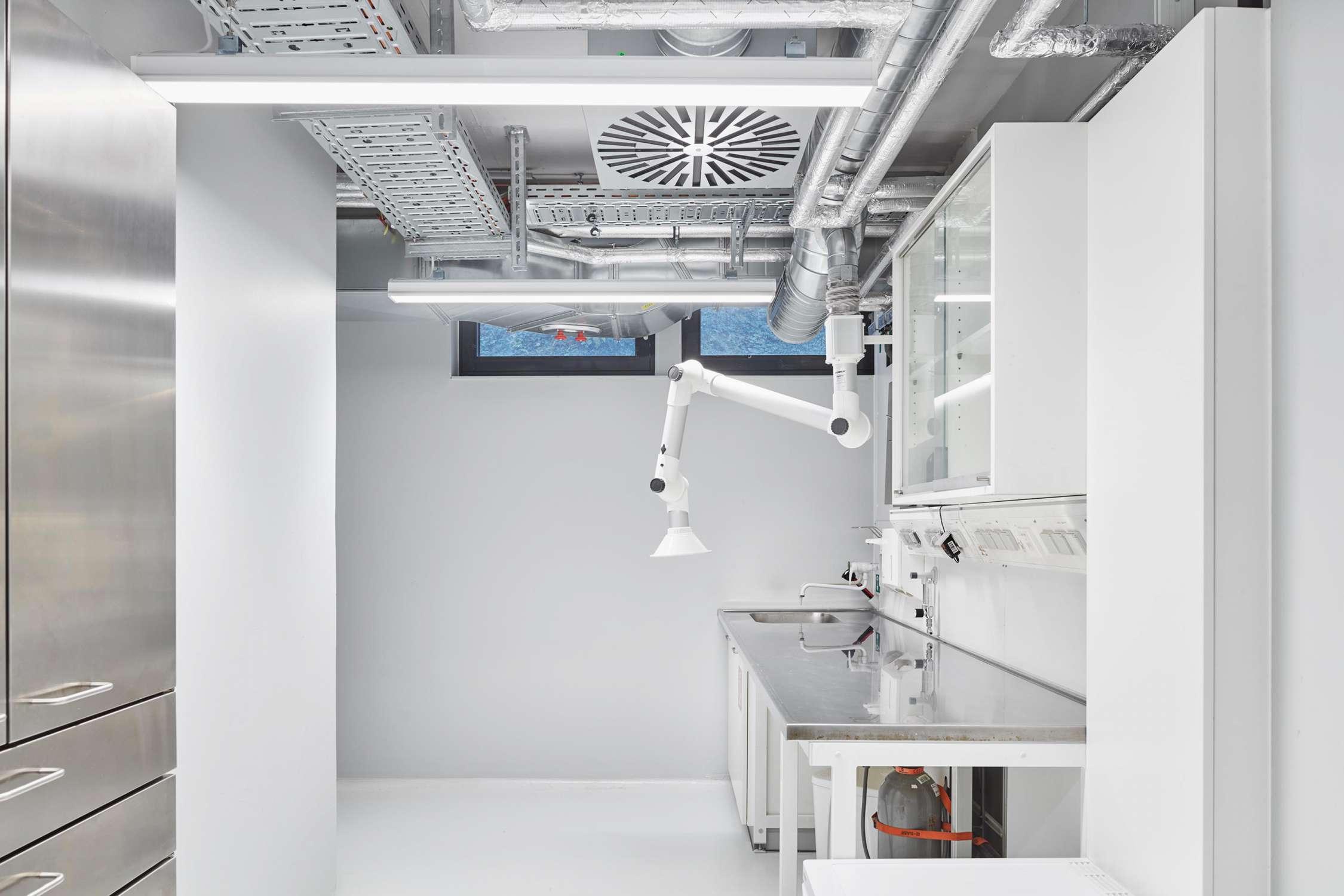 Forschungsflächen im Friedrich-Miescher-Laboratorium (5)