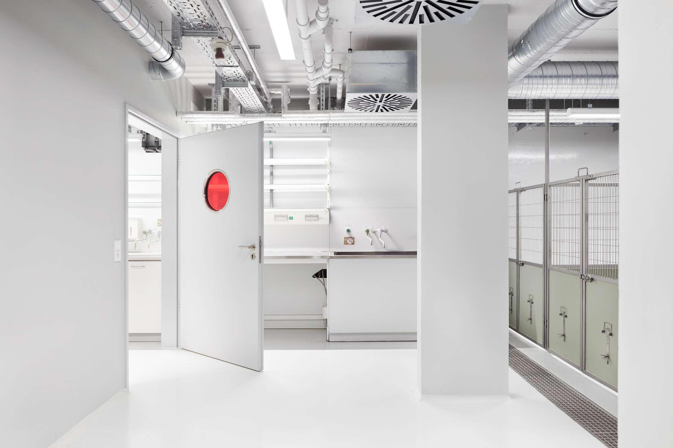 Forschungsflächen im Friedrich-Miescher-Laboratorium (6)
