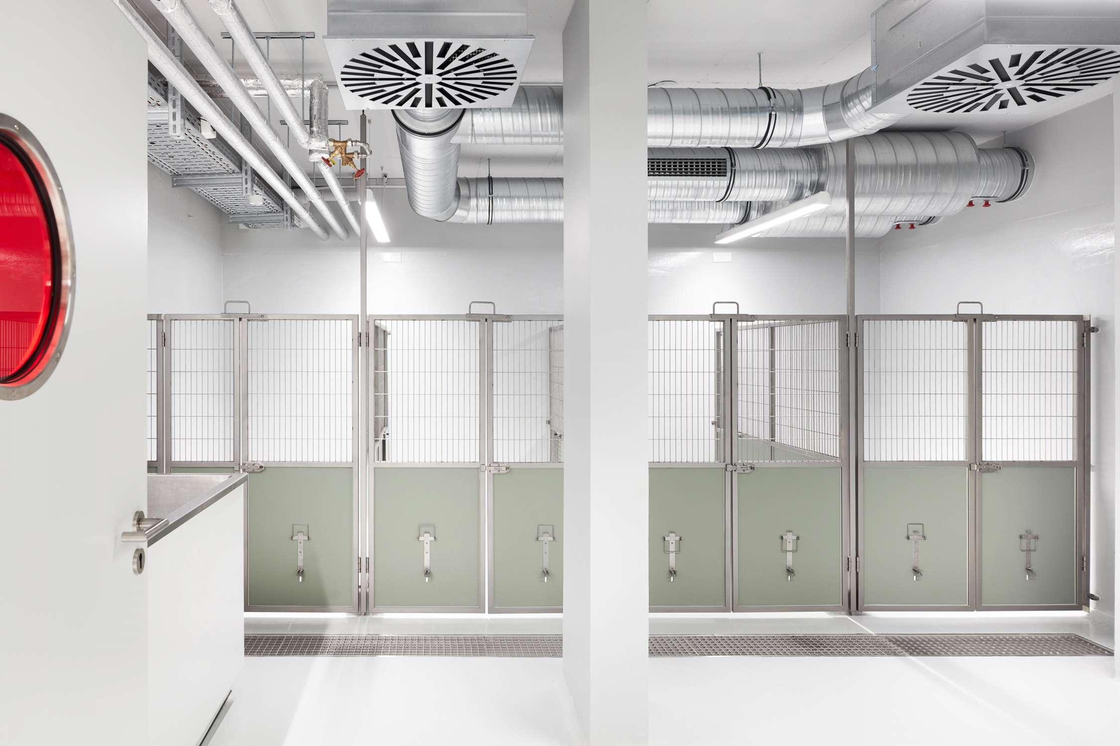 Forschungsflächen im Friedrich-Miescher-Laboratorium (7)