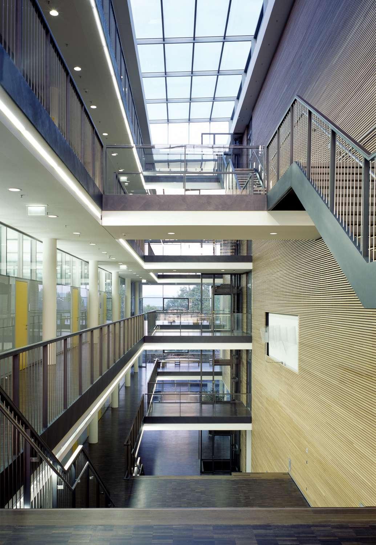 Institut für Entwicklungsbiologie (7)