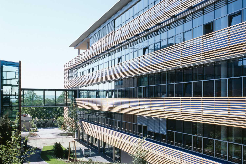 Institut für Entwicklungsbiologie